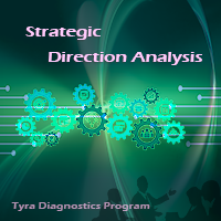 Strategic Direction Analysis