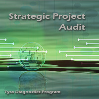 Strategic Project Audit